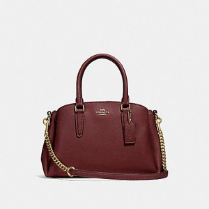 COACH MINI SAGE CARRYALL (WINE)