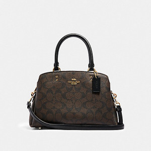 COACH MINI LILLIE CARRYALL IN SIGNATURE CANVAS (IM/BROWN BLACK)